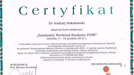 Andrzej Sokołowski 2016 1 (3)_Easy-Resize.com