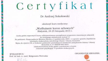 Andrzej Sokołowski 2016 1 (7)_Easy-Resize.com