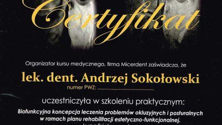 Andrzej-Sokolowski-14011203-(2)