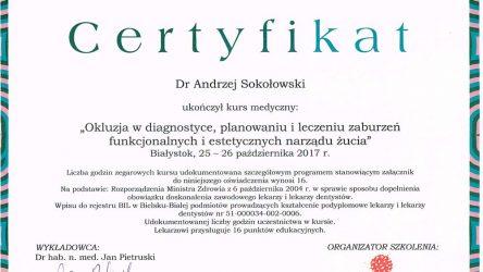 Andrzej-Sokolowski-14011205-(2)