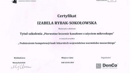 Izabela Rybak Sokołowska 2014 8_Easy-Resize.com