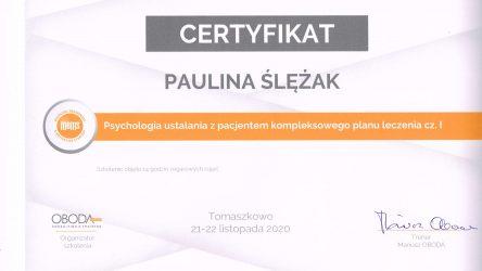 Paulina Slezak - zertyfikat1