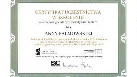 Anna Palmowska - cert (9)